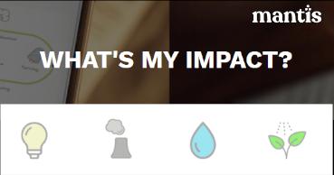 Ihr Impact